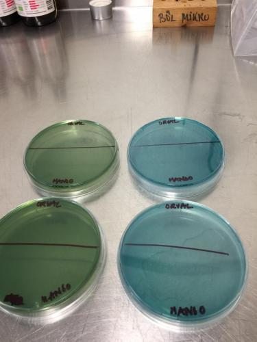 Selective media for microbial analysis